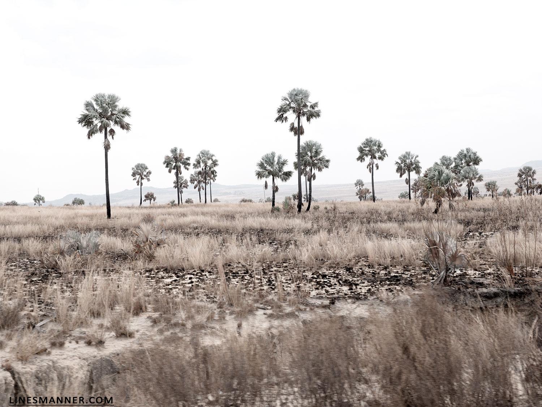 Lines-Manner-Travel-Madagascar-World_Places-Ocean-Landscape-Desert-Photography-Road_Trip-Sea-Sunset-White-8